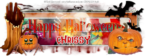 day3banner2chrissy.png