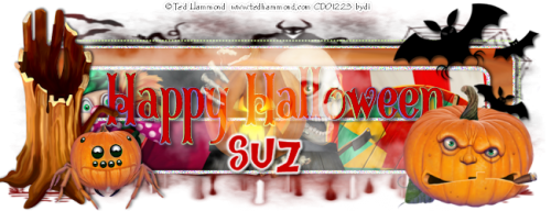 day3banner2suz.png