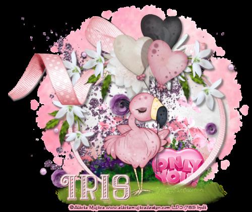 Spring-Flowers2iris.png