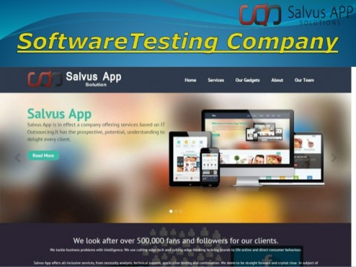 software-testing-company-in-india-1-638.jpg